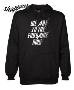We Are In The Endgame Now Hoodie